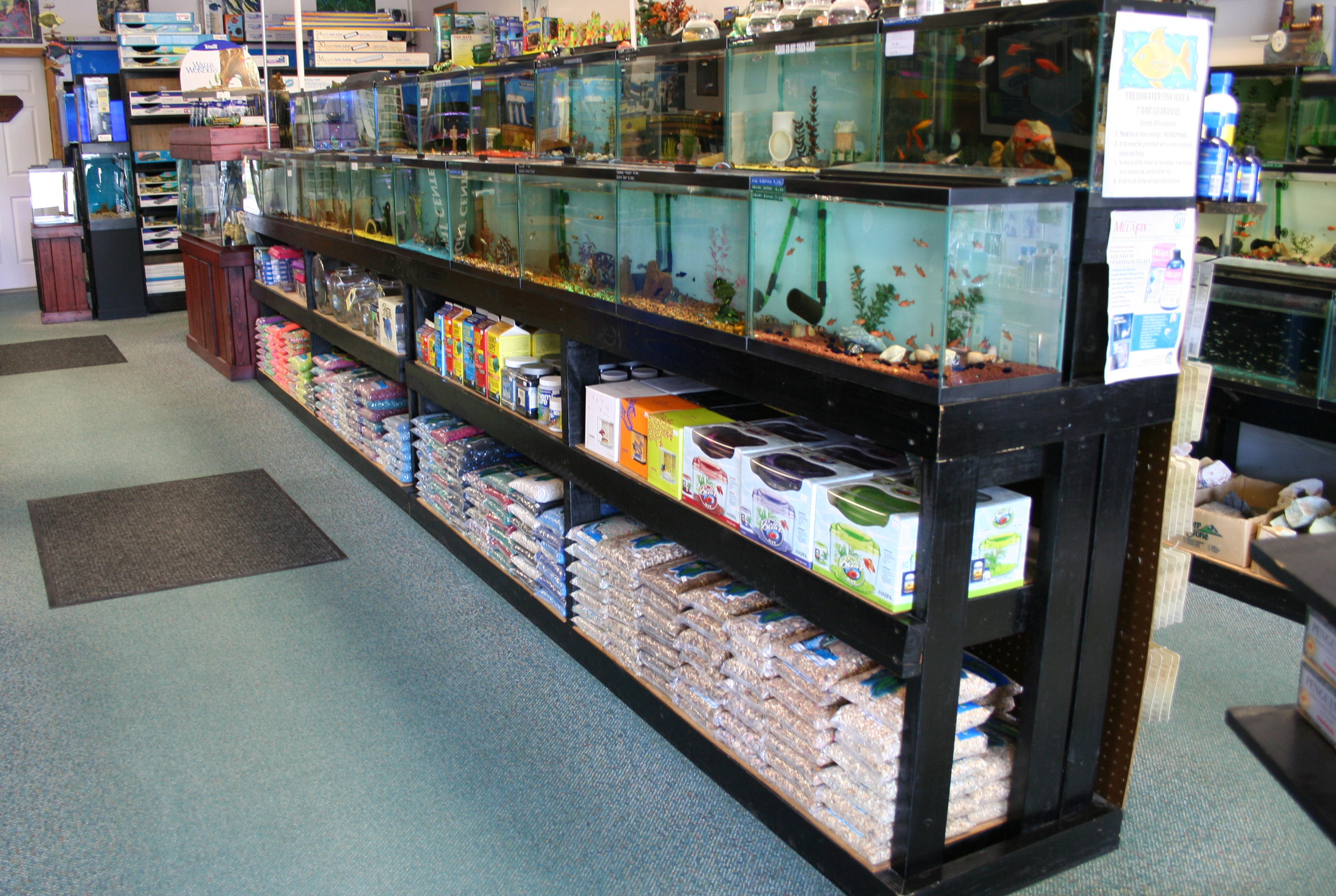 Fish cave we gladly accept open 7 days a week foryour for Community fish list